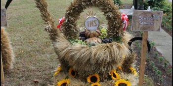 Dożynki Gminne w Sulikowie - zdjęcie nr 13