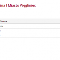 Wybory 2018: Kandydaci do Rady Miejskiej w Węglińcu