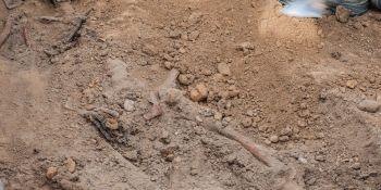 Ekshumacja szczątków niemieckiego żołnierza w Zawidowie (fot. Jerzy Stankiewicz) - zdjęcie nr 9