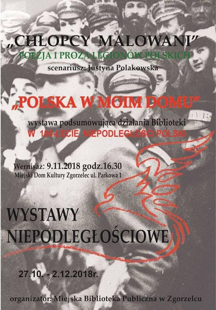 Wystawa została zorganizowana z okazji 100. rocznicy odzyskania przez Polskę niepodległości