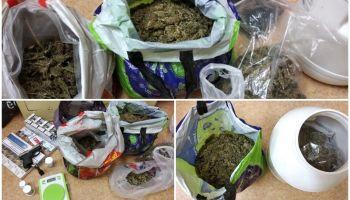Narkotyki i broń gazowa w mieszkaniu