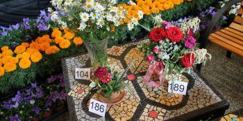 Święto Kwiatów - zdjęcie nr 13