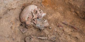 Ekshumacja szczątków niemieckiego żołnierza w Zawidowie (fot. Jerzy Stankiewicz) - zdjęcie nr 6