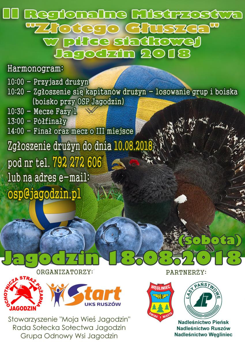 """II Regionalne Mistrzostwa """"Złotego Głuszca"""" w Piłce Siatkowej"""