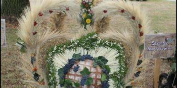 Dożynki Gminne w Sulikowie - zdjęcie nr 8