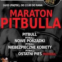 ENEMEF: Maraton Pitbulla z Ostatnim Psem