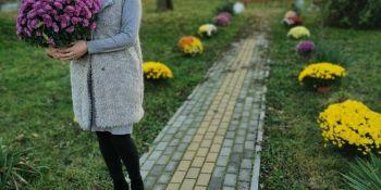 Gminę Zgorzelec przyozdobiły kolorowe chryzantemy - zdjęcie nr 14