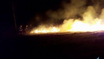 Liczba pożarów traw na terenie powiatu zgorzeleckiego stale rośnie.