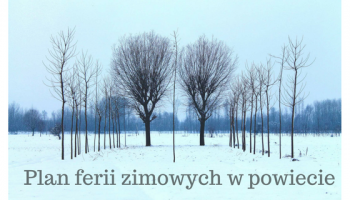 Rozkład ferii zimowych w Zgorzelcu, Bogatyni, Radomierzycach, Zawidowie i Pieńsku.