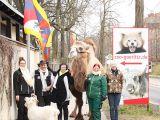 22c-fot-www-zoo-goerlitz-de-i-plath-6986_160x120