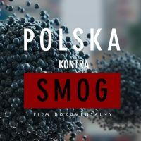 Polska kontra smog