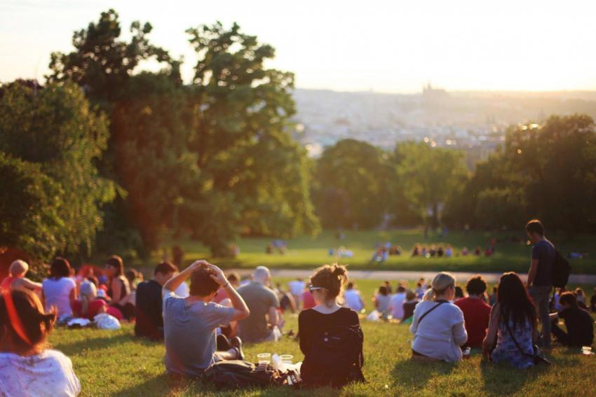 zdjęcie ilustracyjne / pexels.com