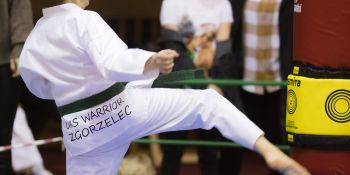 Gwiazdkowy turniej taekwondo - zdjęcie nr 13