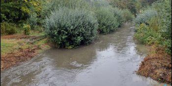 Sytuacja hydrologiczna pod kontrolą - zdjęcie nr 1
