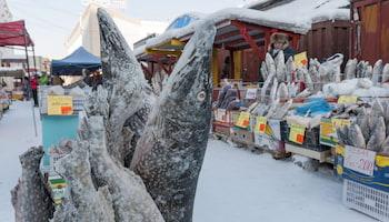 Zimowa Rosja