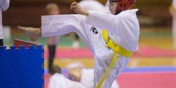 Gwiazdkowy turniej taekwondo - zdjęcie nr 8