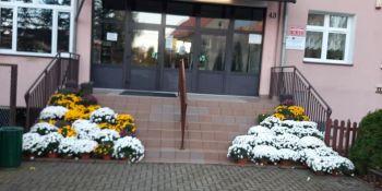 Gminę Zgorzelec przyozdobiły kolorowe chryzantemy - zdjęcie nr 6