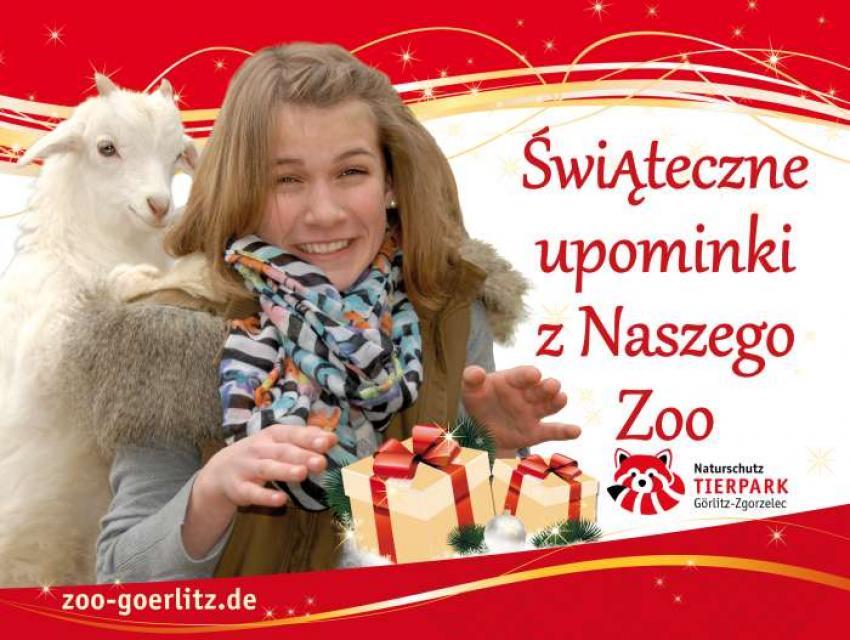 fot. Nasze Zoo