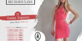 Znamy półfinalistki Miss i Miss Nastolatek Dolnego Śląska 2020! - zdjęcie nr 38