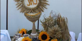 Święto Plonów w Gminie Zgorzelec - zdjęcie nr 11