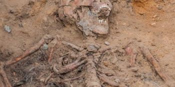 Ekshumacja szczątków niemieckiego żołnierza w Zawidowie (fot. Jerzy Stankiewicz) - zdjęcie nr 10