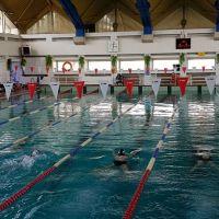 Ponad 120 pływaków ścigało się na zgorzeleckiej pływalni