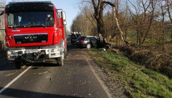 Wypadek na DW 355 relacji Zgorzelec-Zawidów / fot. KPP Zgorzelec