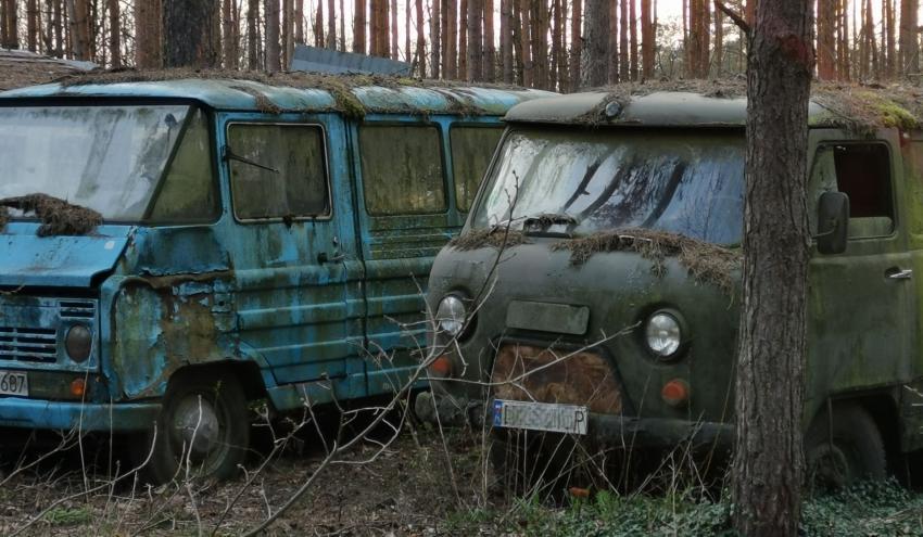 Co najmniej do Wielkiej Soboty obowiązuje zakaz wstępu do lasów trzech nadleśnictw pow. zgorzeleckiego