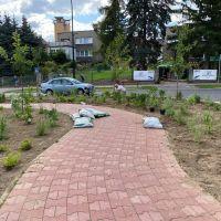 Ogród w mieście. Przy ul. Kościuszki w Zgorzelcu powstają rabaty dekoracyjne