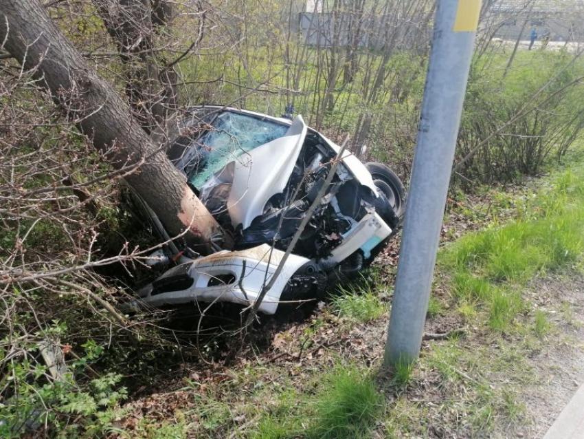 Kierowca Mercedesa stracił panowanie nad kierownicą i uderzył w drzewo / fot. KPP Zgorzelec
