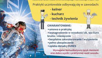 Praktyki zawodowe w Austrii 2020