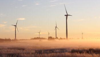 Elektrownia wiatrowa / zdjęcie ilustracyjne / pexels.com