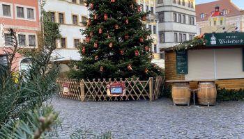 Choinka na Dolnym Rynku (Untermarkt) w Görlitz / fot. Kulturservice Görlitz