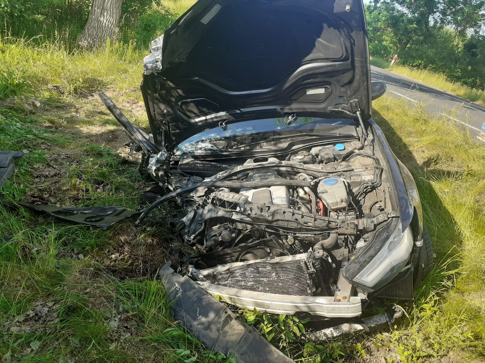 Śmiertelny wypadek na DW352 na wysokosci Koźmina / fot. KP PSP Zgorzelec